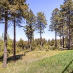Buying land in the Denver Foothills