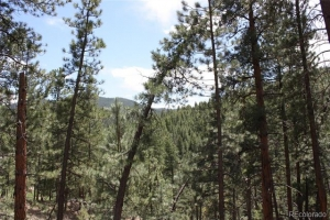 27425 TROUBLESOME GULCH ROAD, EVERGREEN, CO